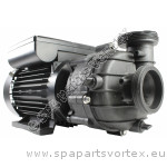 Balboa/Pentair Durajet 2.0 HP 2 SPD Pump