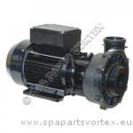 Waterway 2 speed 2.0HP 56 frame (2.5 x 2)